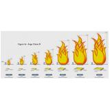 projeto de prevenção e combate a incêndio preço em Americana